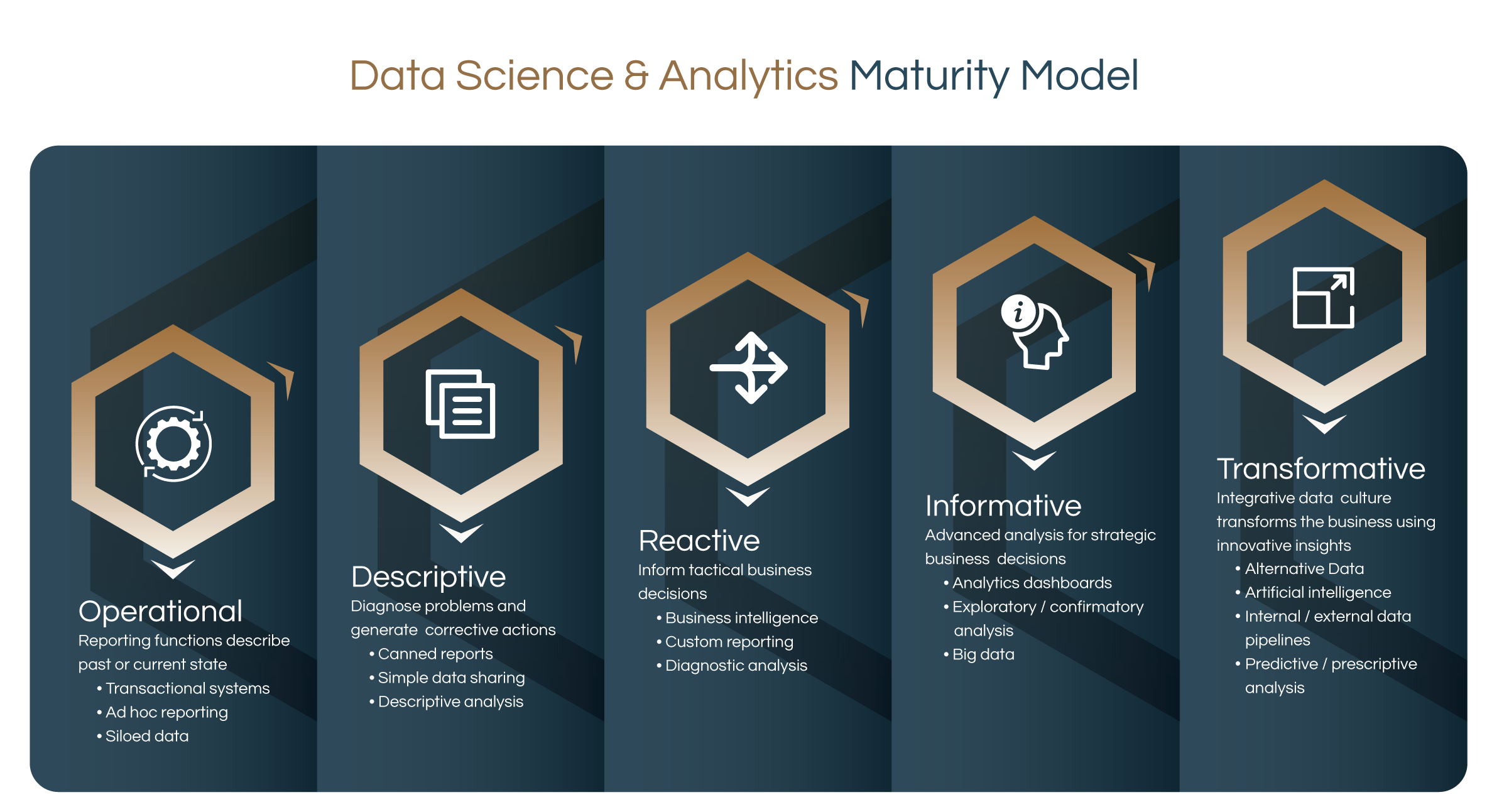 Cognitell data science and analytics maturity model